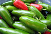 Pepper_jalapeno_early_o